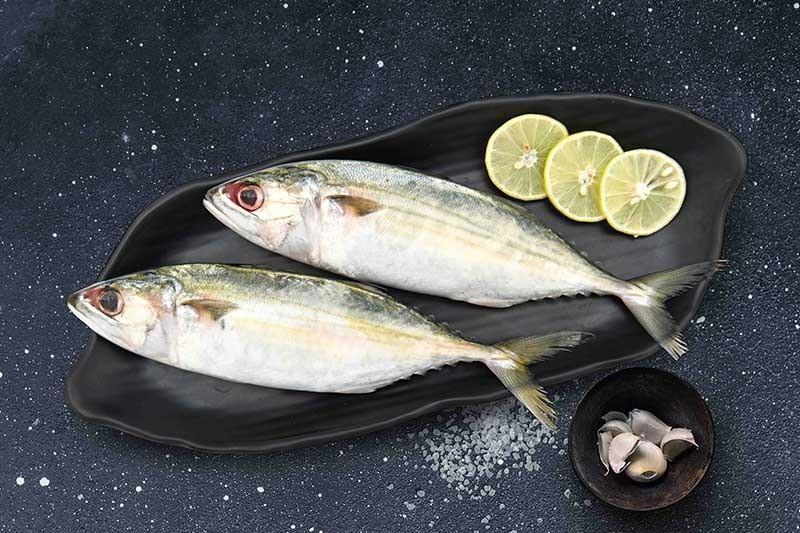 Mackerel / Ayala / Bangda / Aylai (5 to 9 Count/kg) : Buy online |  freshtohome.com
