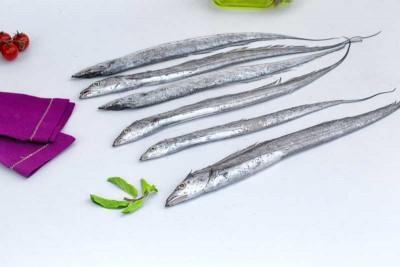 Ribbon Fish / Vaala / Thalayan (Small)