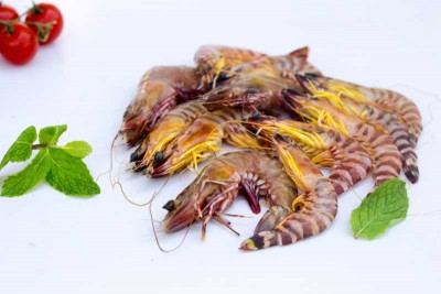 Flower Tiger Shrimp