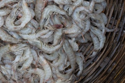 Tiny Soft-Shelled Prawns / Cheriya Chemmeen/ Lau Chingri (Shell can be eaten directly without peeling)