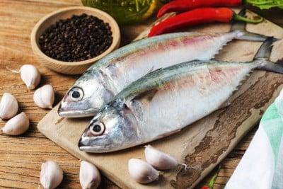 Mackerel / Ayala / Bangda / Aylai (3 to 5 Count/kg) - Whole
