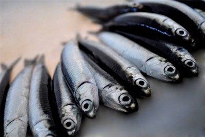 Black Anchovy / Karutha Kozhuva / Natholi (Small & Crunchy) - Whole