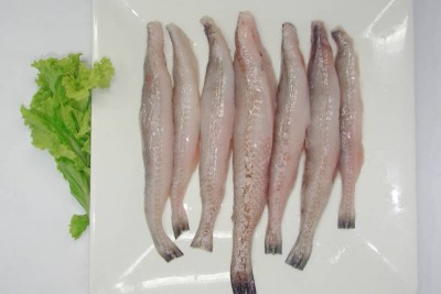 Bombay Duck Fish / Bombil - Whole Cleaned
