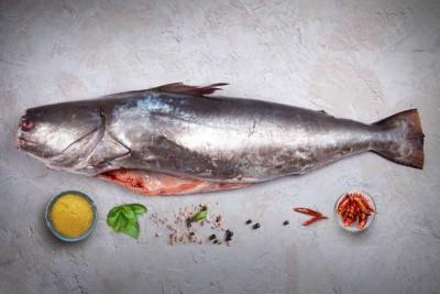 Large Catfish / Etta Koori - Whole Cleaned