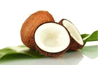 Coconut - Large