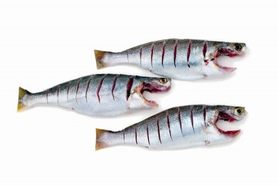 Silver Croaker / Kora (Large) - Whole Cleaned