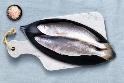 Silver Croaker / Kora / Bhola / ভোলা - Whole