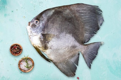 False Pomfret / Bheeman Avoli