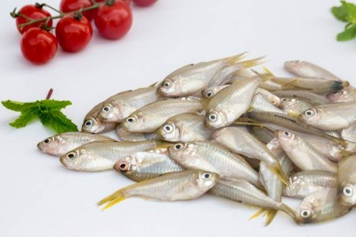 False White Sardine / Small Nandan (Thorny, great for fry) - Whole