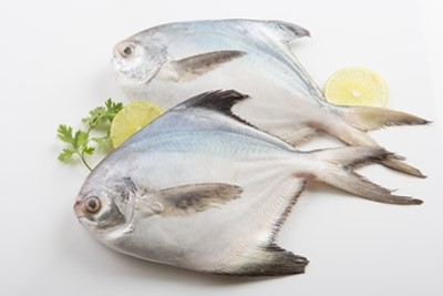 Silver Pomfret / Avoli (200g to 300g) - Whole