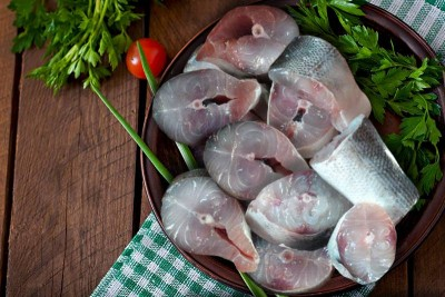 Garfish / Kola (Large) - Steaks