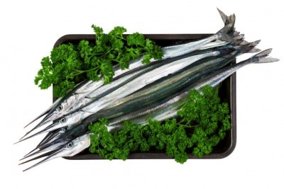 Garfish / Kola (Medium) - Whole