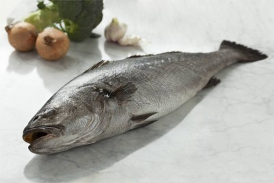 Ghol Fish / Jewfish - Whole