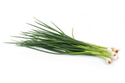 Green Onion - 1 bunch