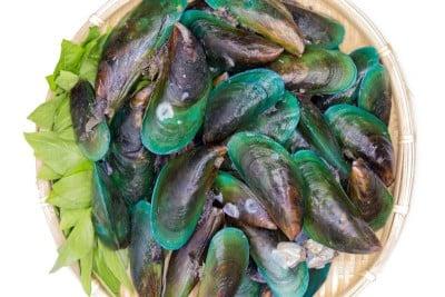 Green Mussel / Kallummekkaya - Whole With Shell (Read the product description carefully)