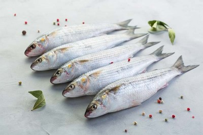 Kerala Grey Mullet / Thirutha / Bhangor / ভাঙ্গর - Whole Cleaned