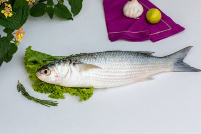 Grey Mullet / Thirutha - Whole