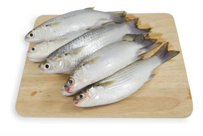 Grey Mullet / Thirutha (Small) - Whole Cleaned