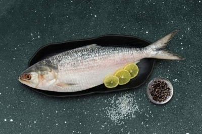 Hilsa / Ilish - (Whole Fish Size 1.3kg-1.4kg) (Cleaned, Bengali Round cut)  1pc