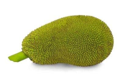 Jack Fruit - Tender