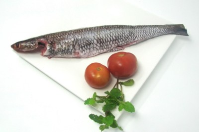 Kada Varaal / Lizard Fish - Whole Cleaned