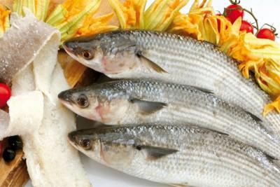 Parshe Fish / পারশে / Shorda/ Boi/ Kanambu/  Gold Spot mullet (small) (Kolkata/Malancha Special) - Whole Cleaned, Gutted