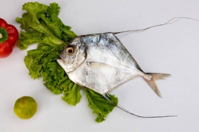 Silver Trevally / Kannadi Vatta (Small) - Whole