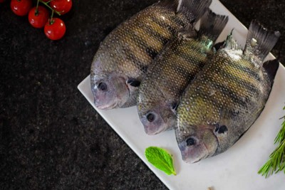 Pearl Spot / Karimeen / Koral (Small) - Whole