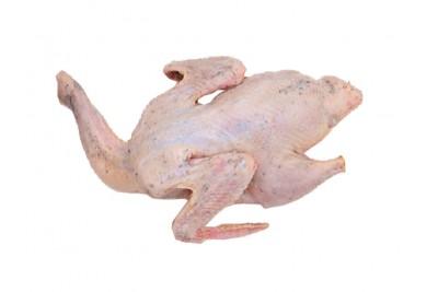 Premium Kuttanadan Duck Dressed with Tasty Skin Medium (1pc Bird/Pack) - Whole Cleaned With Skin