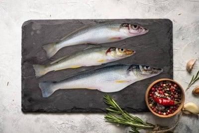 Lady Fish / Kane / Silver Whiting (Small) - Whole