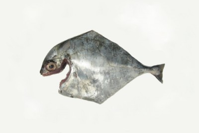 Silver Trevally / Kannadi Vatta - Whole Cleaned