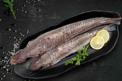 Kada Varaal / Lizard Fish - Whole Cleaned