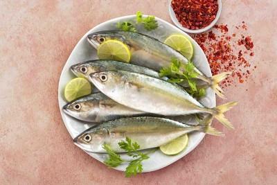 Mackerel / Ayala / Bangda / Aylai (10 to 14 Count/kg)