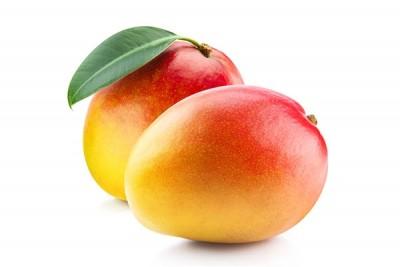 Mango Lal bagh (IN) - Pack of 3 / (مانجو هندي (لال باغ