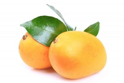 Mango Yellow (TH) - Pack of 2 / مانجو تايلندي