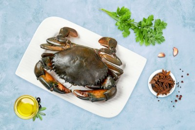 Mud Crab  - Whole