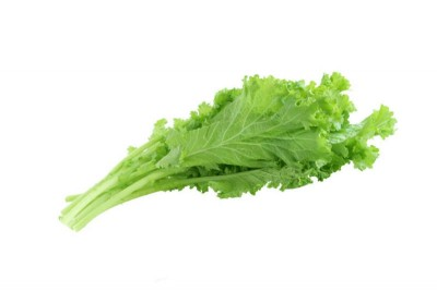 Musterd Leaf Sarasonka Sag