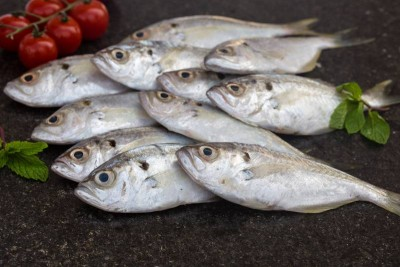 White Fish / False Trevally / Parava - Whole