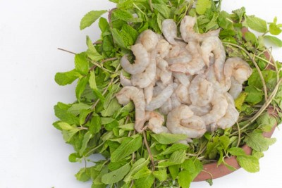 Indian Prawns / Venami / Vannamei / Jhinga / Chemmin (40+ Count/kg) - PUD (Peeled & Undeveined) Meat