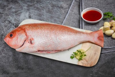 Red Snapper / Chempalli / Rane (Large) - Whole cleaned