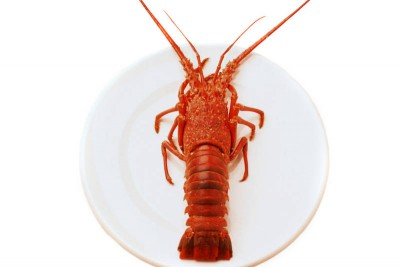 Red Lobsters (Small) - Whole