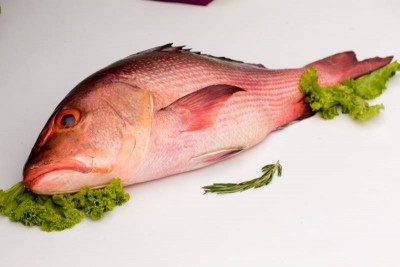 Red Snapper / Chempalli / Rane (Large) - Whole