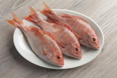 Red Snapper / Chempalli / Rane (Small) - Whole