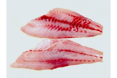 Striped Grouper / Reef Cod / Kalava - Fillet 250g Pack