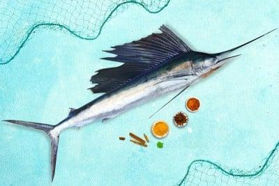 Sail Fish / Ola Meen