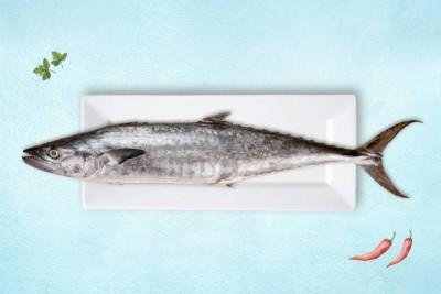 Seer Fish / King Fish / Surmai / Neymeen / Vanjaram / Anjal (2kg to 5kg) - Whole