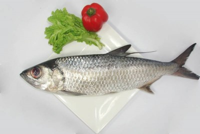 Freshwater Mullet / Kayal Kanni - Whole