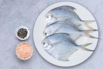 Silver Pomfret / Avoli (200g to 300g) - Whole