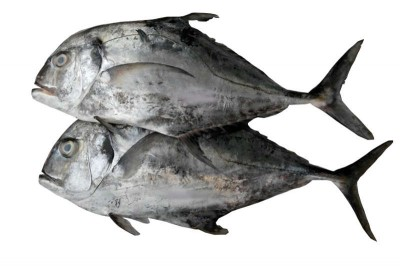 Silver Trevally / Kannadi Vatta - Whole