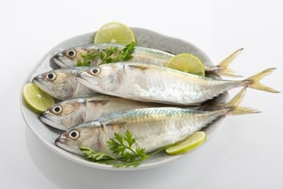 Mackerel / Ayala / Bangda / Aylai (10 to 14 Count/kg)